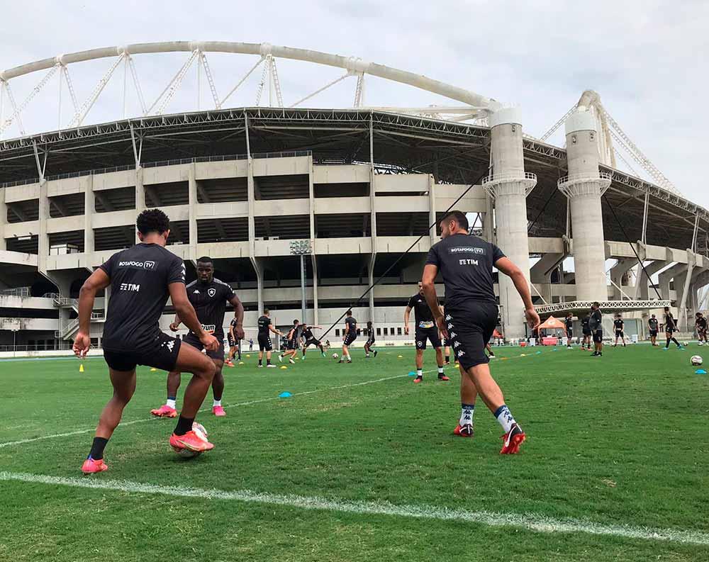 Returno tem enaltecido retorno à Série A no Botafogo